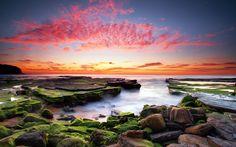 мох, облака, небо, краски, море, камни, океан