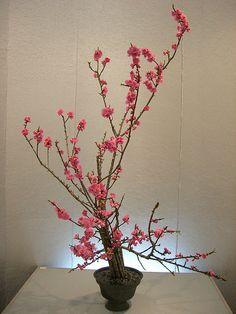 Japanese flower arrangement 7, Ikebana: いけばな | 출처: Nullumayulife