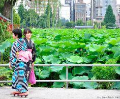 People in Japan: Shinobazu Pond, Ueno, Tokyo