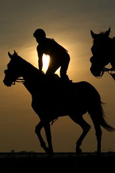 ride! Morning workout thoroughbred horses (Photographer not credited!)