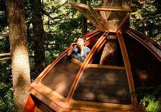 Você já quis fugir de tudo, montar uma casa na árvore e passar o resto da sua vida observando as estrelas e vivendo da forma mais natural possível? O canadense Joel Allen já. Viver isolado do mundo não foi algo que deu exatamente certo, mas ele construiu uma casa na árvore simplesmente incrível em algum lugar da floresta de Whistler, perto de Vancouver, no Canadá. Ao ser mandado embora de um emprego, em 2006, o então desenvolvedor de softwares decidiu mudar de vida e, por conta própria…