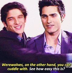 Imagen de cuddle, teen wolf, and derek Teen Wolf Memes, Teen Wolf Quotes, Teen Wolf Mtv, Teen Wolf Funny, Teen Wolf Boys, Teen Wolf Dylan, Teen Wolf Stiles, Teen Wolf Cast, Dylan O'brien