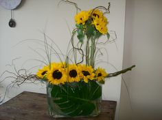 Sun Flowers and Lily grass and curley