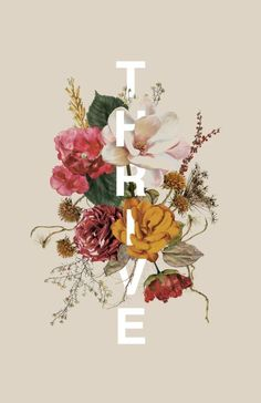 I would love to add this beautifully decorative floral + typography to my home decor.Thrive I by Lindsey Pruitt Web Design, Game Design, Flowers Wallpaper, Poster Photo, Art Watercolor, Photocollage, Grafik Design, Graphic Design Inspiration, Flower Graphic Design