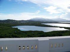 Las Cabezas de San Juan Nature Reserve (seven different ecosystems including forests, beaches and offshore coral reefs) - Fajardo, Puerto Rico