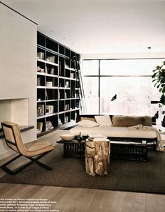book shelves, ladder and great chair