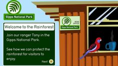 Explore an Australian Rainforest - English (5). Watch a rainforest appear and grow, and explore the three layers of a rainforest: canopy, understorey, and forest floor. Match labels to the rainforest layers and find hidden animals.
