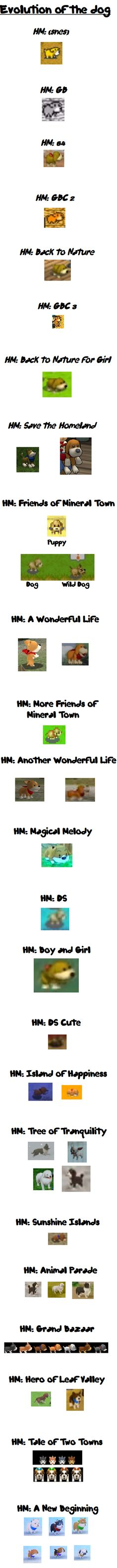 every harvest moon game dog(: evolution of the dog haha