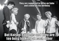 They are supposed to focus on Suho and celebrate his birthday, but Kaisoo happens and they are too busy looking at each other.