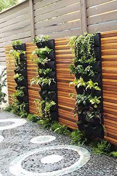 Succulent Wall Planter, Hanging Terrarium, Vertical Planter, Vertical Garden Diy, Garden Terrarium, Diy Planters, Hanging Planters, Vertical Gardens, Backyard Fences