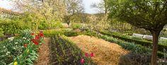 la ferme Permaculture, Bec Hellouin, Quelques Photos, Garden Design, Gardening, Architecture, Gardens, Corner Garden, Backyard Farming