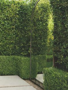 Create exterior illusions of additional garden rooms with mirrors.