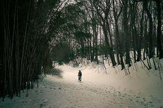 Winter on the OCA #cycling #rideallyear