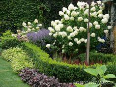 Front House Landscaping, Landscaping Retaining Walls, Farmhouse Landscaping, Herb Garden, Garden Beds, Garden Plants, Hydrangea Garden, Garden Landscape Design, Garden Borders