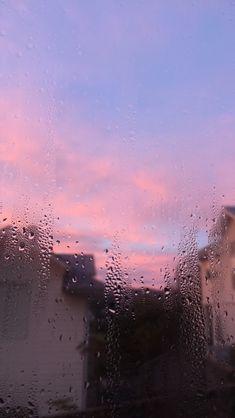 violet morning 3.3