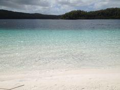 Die unglaublich intensiven Farben des Lake McKenzie. Airlie Beach, Great Barrier Reef, Brisbane, Fraser Island, Surfer, Travel Pictures, Water, Outdoor, Humpback Whale
