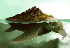 Aspidochelone- An island sized giant whale or turtle. Mythical Sea Creatures, Mythological Creatures, Fantasy Creatures, Giant Sea Turtle, Sea Turtle Art, Sea Turtles, Fauna Marina, Scary Art, Legendary Creature