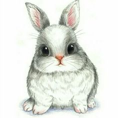 萌 兔 彩 铅 conejos bunny drawing, rabbit drawing и draw Bunny Drawing, Bunny Art, Bunny Pics, Big Bunny, Cute Drawings, Animal Drawings, Pencil Drawings, Drawings Of Cats, Animal Paintings