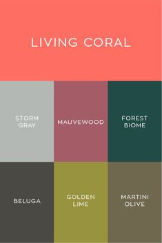 PANTONE Color of the Year 2019 Living Coral &; Willowdale Estate PANTONE Color of the Year 2019 Living Coral &; Coral Colour Palette, Pantone Colour Palettes, Mauve Color, Coral Color, Pantone Color, Palette Pantone, Pantone Green, Spring Color Palette, Coral Pink