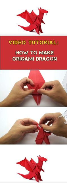 how to make red origami dragon video tutorial More. - how to make red origami dragon video tutorial More. Origami Design, Diy Origami, Origami Ball, Origami And Kirigami, How To Make Origami, Origami Stars, Origami Ideas, Origami Folding, Origami Paper Art