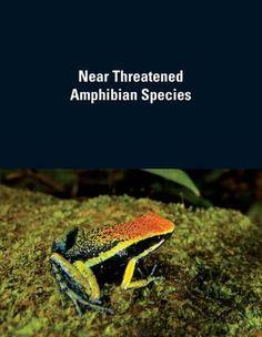 taw-nt-species-profiles