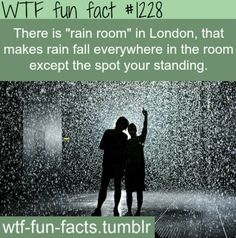 Rain Room, an exhibition where visitors can experience the pitter patter sound of raindrops hitting the ground and the moisture in the air without actually getting wet. At the Curve in the Barbican Centre in London Oh The Places You'll Go, Cool Places To Visit, Places To Travel, Wtf Fun Facts Funny, Weird Facts, Random Facts, I Want To Travel, Fun Travel, The More You Know