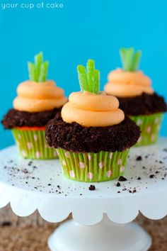 Garden Carrot Cupcakes for Easter - Your Cup of Cake