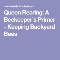 Queen Rearing: A Beekeeper's Primer - Keeping Backyard Bees
