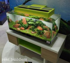 New 2014 29 Gallon Fluval Edge, with built in timer and corresponding app!