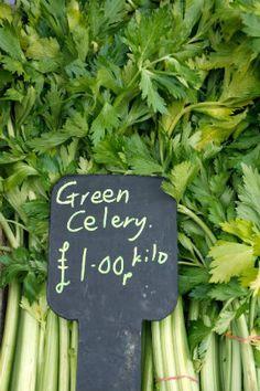 alkaline snacks main image: celery