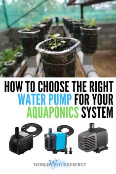 Read our guide on how to select and determine the right water pump for your aquaponics system. We'll discuss flow rate, head height, and other factors you need to choose the right pump for your system. Aquaponics System, Aquaponics Greenhouse, Aquaponics Plants, Hydroponic Gardening, Hydroponic Growing, Gardening Hacks, Types Of Vegetables, Growing Vegetables, Fish Farming