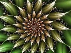 fractais na natureza - Pesquisa Google