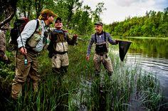 Photography: Nirvana of the North: Jämtland, Sweden   Hatch Magazine - Fly Fishing, etc.