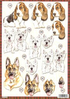 http://www.the-craft-corner.co.uk/bassett-hound-dog-die-cut-3d-decoupage-sheet-from-craft-uk-ltd-9642-p.asp