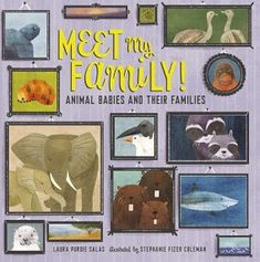 BooksForKidsBlog: In the Beginning! Meet My Family (Animal Babies and Their Families) Laura Purdie Salas