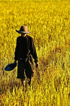 """""""The harvest truly is plenteous, but the laborers are few."""" 