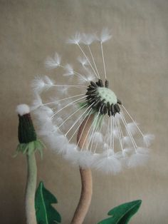 """Needle felted dandelion Nature home interior von FeltedcreaturesBrowse unique items from Feltedcreatures on Etsy, a global marketplace of handmade, vintage and creative goods.westcoastfairy: """" archiemcphee: """" This beautiful dandelion looks real e Dandelion Plant, Dandelion Clock, Needle Felted Animals, Felt Animals, Wet Felting, Needle Felting, Felt Flowers, Paper Flowers, 3d Figures"""