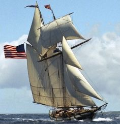 During the American Revolutionary War and the War of privateers sailed around Nantucket's coastline. This Thursday, August 2012 at 3 pm, the weatherly, fast, and heavily armed Clipper Schooner Lynx will be sailing into Nantucket Harbor. Catamaran, Sailboat Art, Sailboats, Nautical Art, Tall Ships Festival, Classic Sailing, Ship Paintings, Nantucket Island, War Of 1812