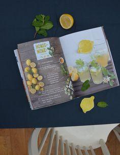 """Honig-Minz-Limonade (nach dem Rezept in """"Ein Fest im Grünen – Für Kinder"""")"""