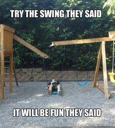 Try the swing they said. It will be fun they said. -____-  PS: Learn how to earn $100-$500 or more Daily. Click on the picture or the link bellow to find out how! http://linkprosperity.com/AtHomeIncomeProviders