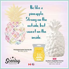 Order yours as of March 1. Www.brittanycraig.scentsy.us