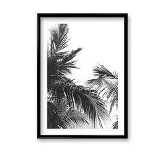 Wyjątkowy plakat botaniczny, nada Twojemu wnętrzu niepowtarzalny charakter.Tworzy ciekawy efekt sam lub zestawiony z innymi plakatami.Nasze plakaty drukowane są na wysokiej jakości satynowanym papierze 220 g/m2, następnie pakowane w solidne tekturowe tuby, tak aby bezpiecznie do Ciebie dota ... Black And White, Abstract, Artwork, Summary, Work Of Art, Black N White, Auguste Rodin Artwork, Black White, Artworks
