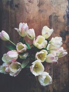 Tulips. They've always been my favourite flower that grows in my garden each year since I was a small child.