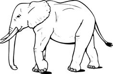 The latest tips and news on elephant coloring pages are on color page. On color page you will find everything you need on elephant coloring pages. Elephant Template, Elephant Outline, Elephant Day, Elephant Colour, Cartoon Elephant, Asian Elephant, Elephant Stencil, Elephant Sketch, Elephant Facts