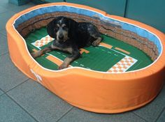 Stadium Cribs is excited to announce the release of NCAA Stadium Pet Beds. Have your pet rest proudly on the 50 yard line of your favorite stadium. The beds feature team matching colors and logo on the outside. Tennessee Volunteers Football, Tennessee Football, Football Tailgate, Football Season, College Football, Alabama Football, American Football, Football Helmets, Pet Beds