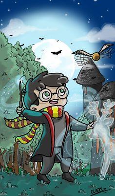 Harry Potter, meu primeiro e maior amor!