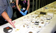 Historical Metal Detector Discoveries - Metal Detector Finds at WomansDay.com