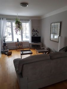 Grand Et Lumineux 6 1 2 Avec Garage Dans Le Vieux Longueuil Home Decor Home Furniture