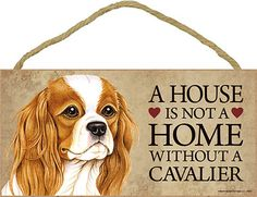 Cavalier King Charles Spaniel Dog Lover Collection