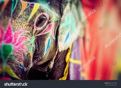 Find Elephant India Jaipur State Rajasthan stock images in HD and millions of other royalty-free stock photos, illustrations and vectors in the Shutterstock collection. Thousands of new, high-quality pictures added every day. Elephant India, Elephant Face, Jaipur, Face Images, Photo Editing, Royalty Free Stock Photos, Drawings, Illustration, Vectors